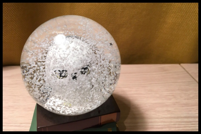The image shows the Hedwig snow globe shaken up, the white snow and silver stars are covering Hedwig