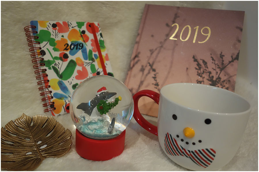 The things bought from Paperchase, from left to right there is a gold trinket dish in the shape of a leaf from a cheese plant, a small 2019 watercolour patterend diary, a snowglob with a shark biting a christmas tree inside, a larger 2019 diary with a photo of plants on the front and a mug with a snowman face and 3d carrot nose on it