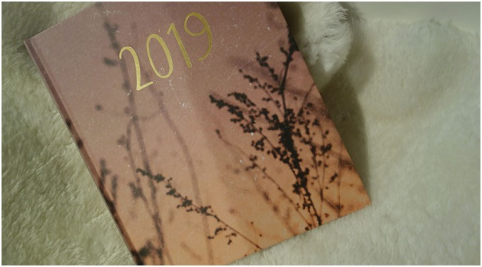 A 2019 diary is sat on a fake sheepskin rug