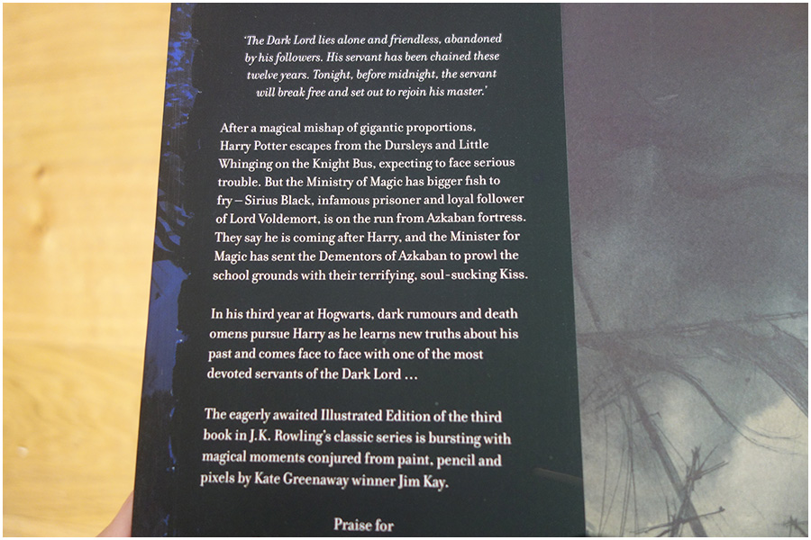 The inside of the dust jacket at the front, it gives the blurb of the book
