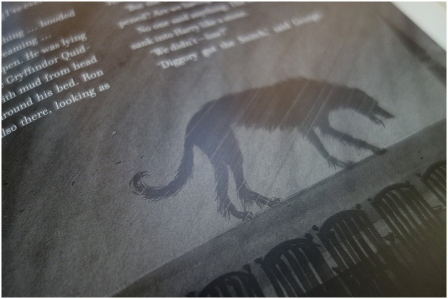 an image of one of the pages of the book. It shows part of an illustration at the bottom of a page of the shadow of a dog in the rain with the text above it in white to contrast on the grey background