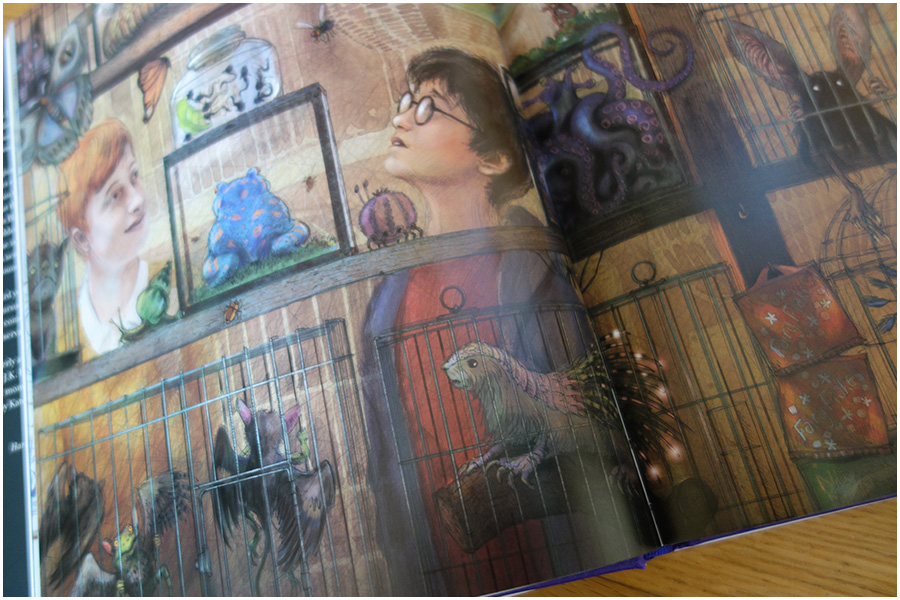 The illustration of Harry and his friends looking at the creatures in the magical creatures store